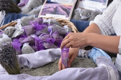 banner_lavender1