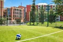 f_Sports-field-1_f_1